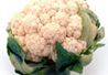 Baby Cauliflower